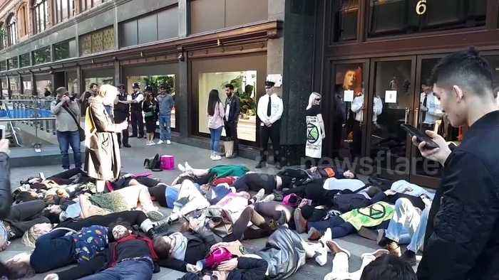 Extinction Rebellion activists hold dramatic 'die-in' outside Harrods and one rants at security guards