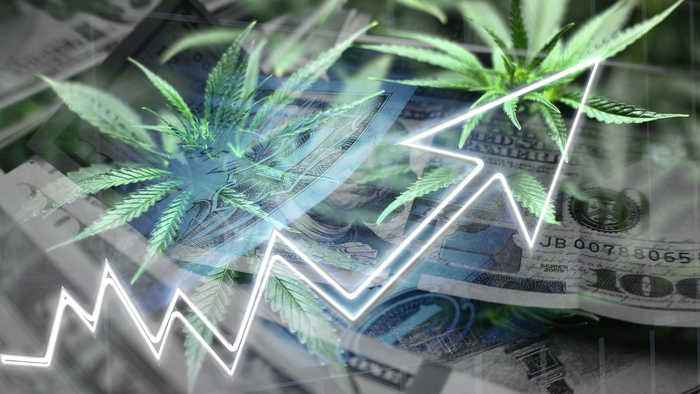 One Thing Investors Need to Know Before Investing in Cannabis
