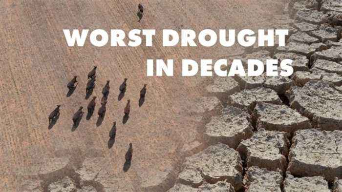 Severe droughts are affecting Angola and North Korea