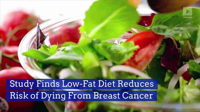 Study Finds Low-Fat Diet Reduces Risk of Dying From Breast Cancer