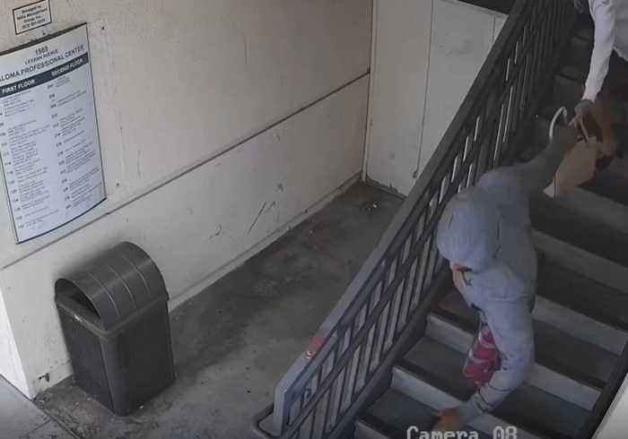Purse Snatcher Violently Drags Mother and Child Down San Jose Staircase