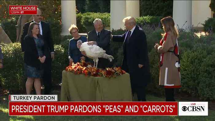 In 2018 President Trump gave a pardon to 'Peas'