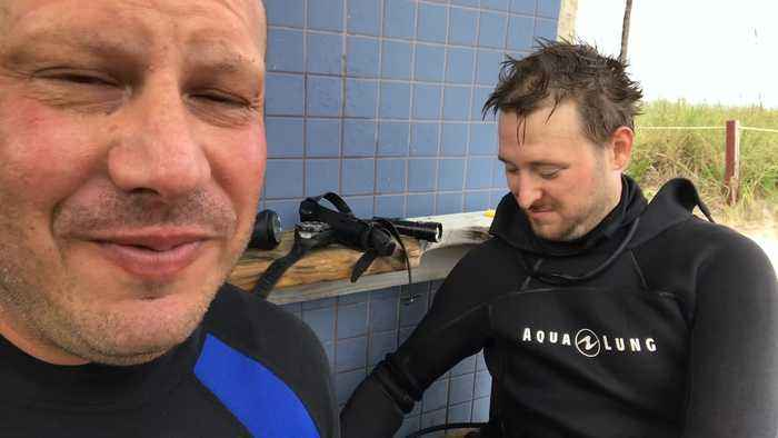 Shark Rescued Just Off Shore