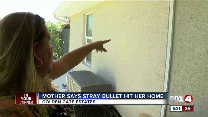 Collier County woman: stray bullet misses her and her 4-year-old daughter by a few feet