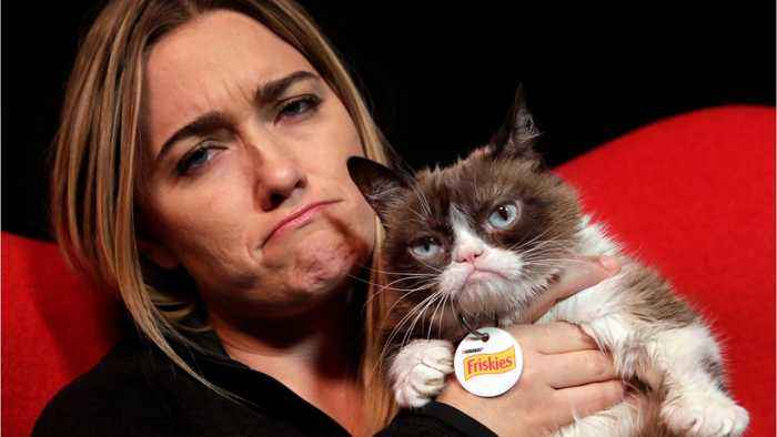 Grumpy Cat Has Dies At 7