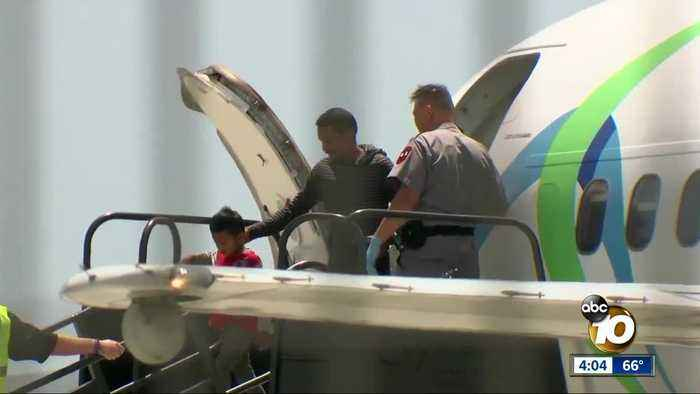 Hundreds of migrants flown to San Diego for processing