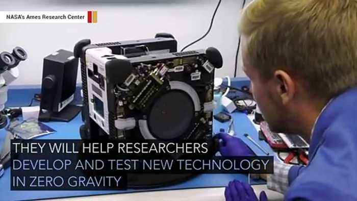 International Space Station Gets New Cube-Shaped Robots