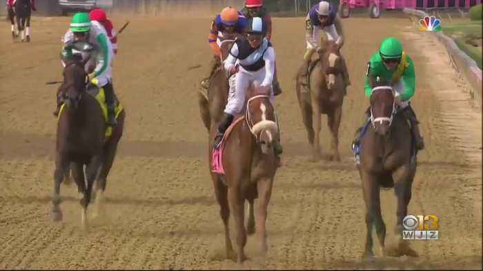 Those Involved In The Preakness Still See It Has A Big Race Despite No Possibility Of A Triple Crown