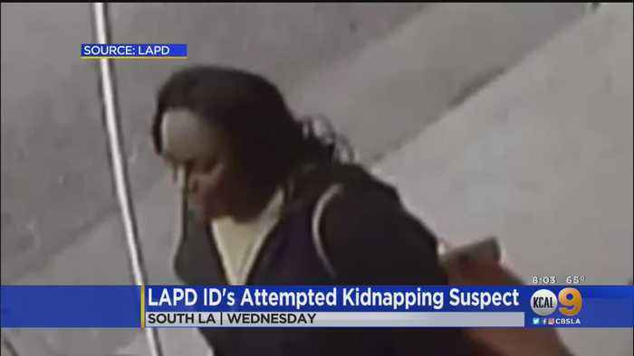 Second Suspect Identified In Attempted Kidnapping Of Young Boy