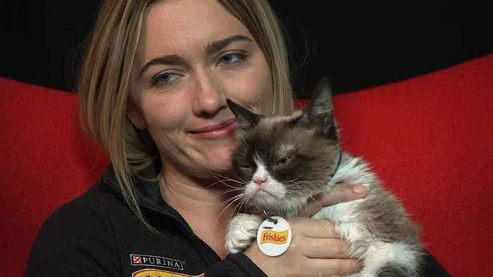 Grumpy Cat, the internet sensation, dies aged seven