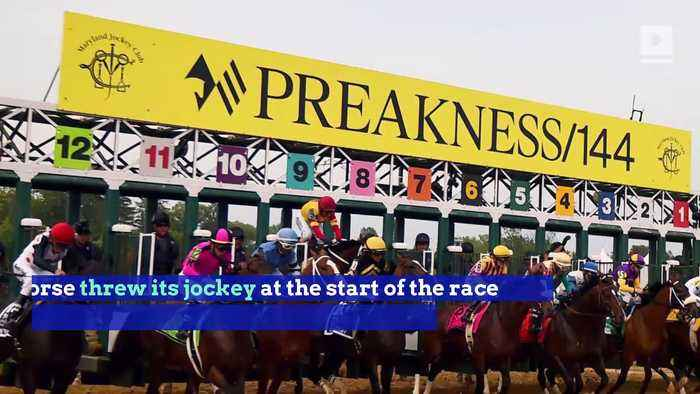 Bodexpress Steals Preakness Spotlight By Running Entire Race Without a Jockey