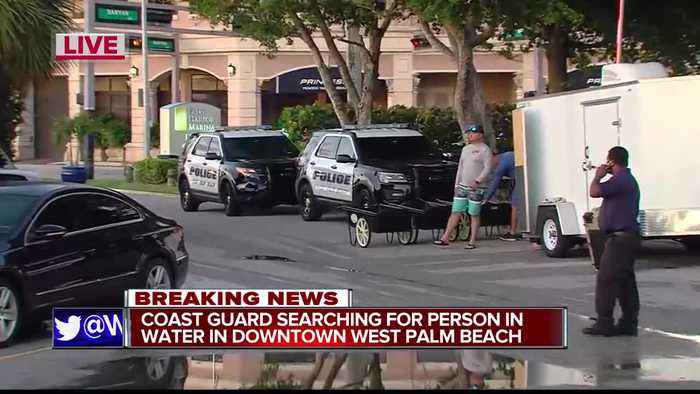 No one found after search for person in the water at Palm Harbor Marina in West Palm Beach