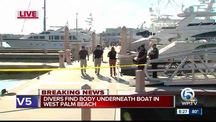 Body recovered from Palm Harbor Marina in West Palm Beach