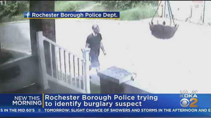 Rochester Police Working To ID Burglary Suspect
