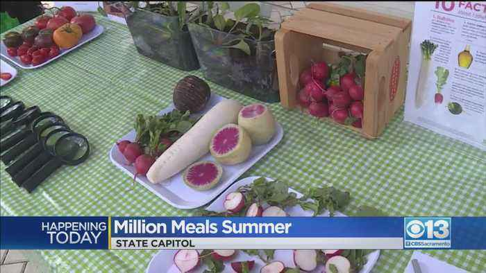 'Million Meals Summer' At State Capitol
