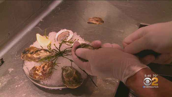 New York Considers Tax Breaks For Recycling Oyster Shells