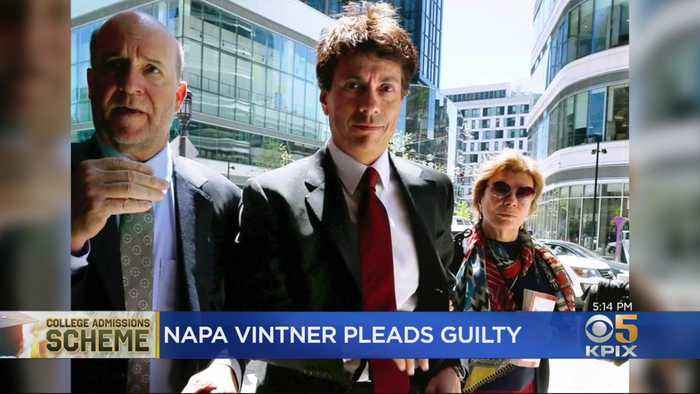Napa Valley Vintner Pleads Guilty In College Admissions Scandal