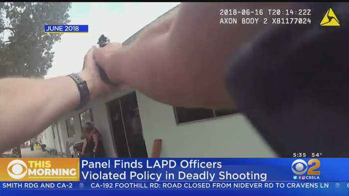 Two LAPD Officers To Be Disciplined In Killing Of Innocent Woman During Van Nuys Hostage Standoff