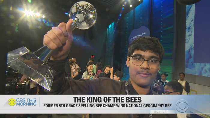 Smart Texas 8th Grader Is The King Of Bees