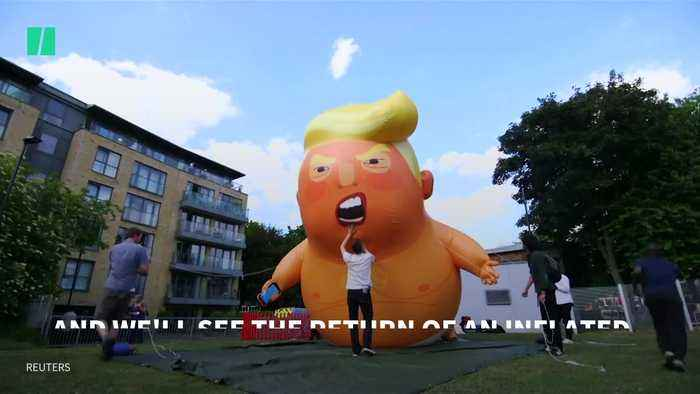 Baby Trump Blimp Inflated... Again