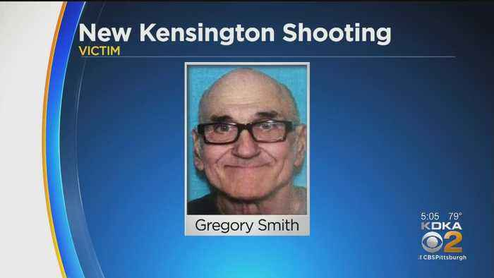 Police Searching For Suspect In Shooting Of Delivery Driver In New Kensington