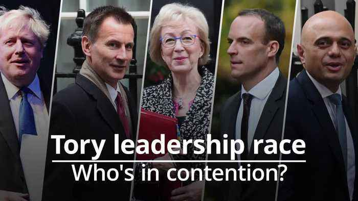 Who could be the next Conservative leader?