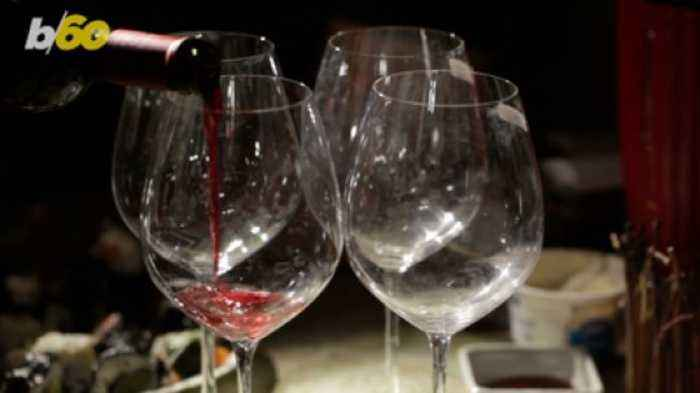 Red or White? What Your Wine Pick Says About Your Personality