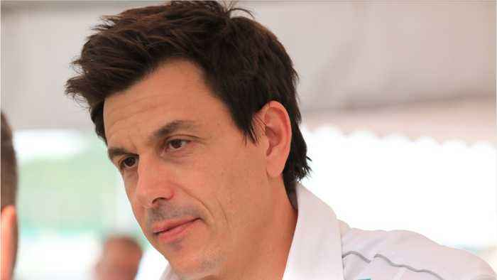 Wolff Says Sweeping In 2019 Is Not Realistic