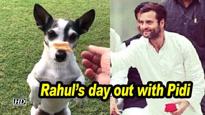 Rahul's day out with Pidi