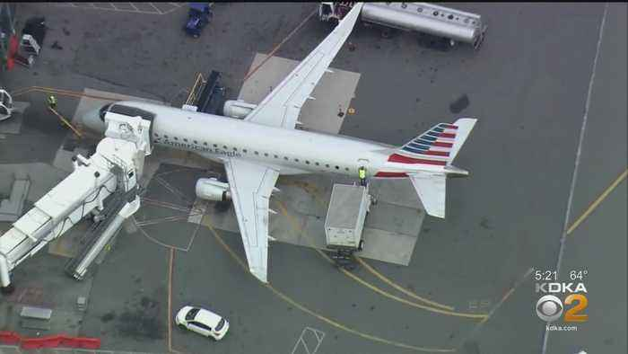 Plane En Route To Pittsburgh Strikes Bird, Returns To LaGuardia Airport