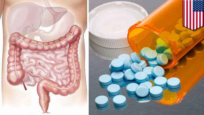 Gut bacteria could affect the way meds work