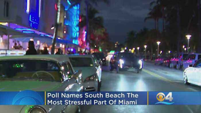 South Beach Tops Poll Of Most Stressful Locations In Miami, Study Finds