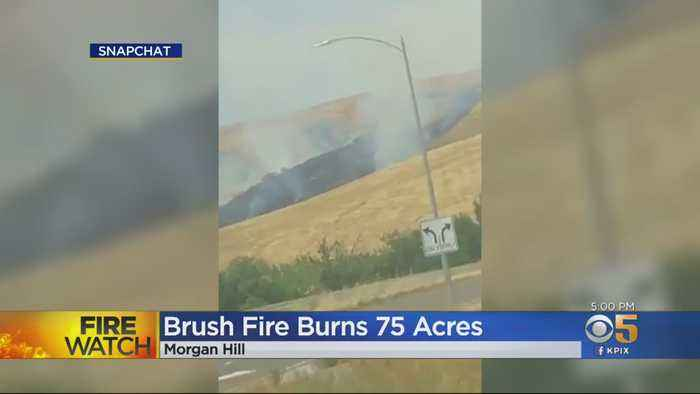 Wildfire Near Morgan Hill Quickly Grows To 75 Acres