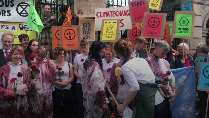 Extinction Rebellion pour fake blood on activists in Dublin