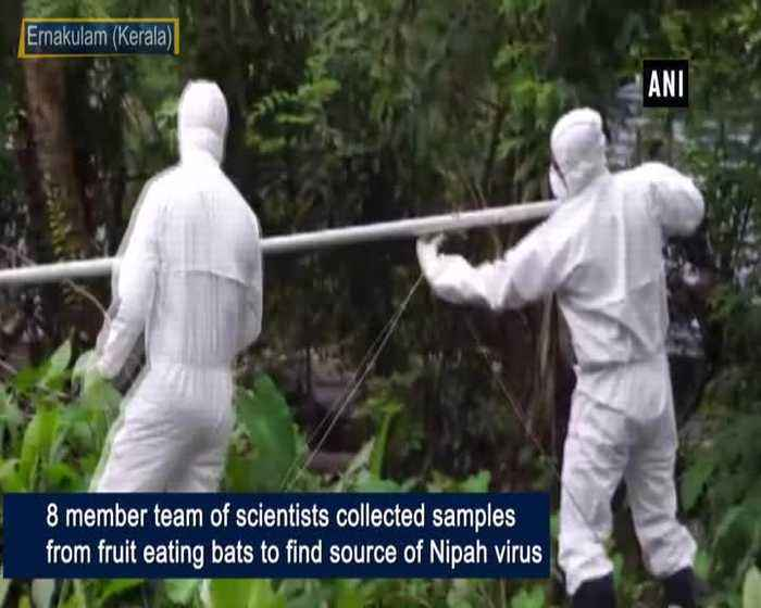 Scientists collect samples to find sources of Nipah virus in Kerala