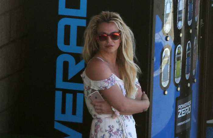 Britney Spears granted permanent restraining order
