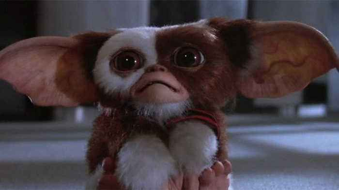 Gremlins 2 The New Batch Movie (1990)