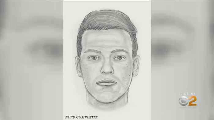 Police Investigating Potential Child Luring Case In Hicksville