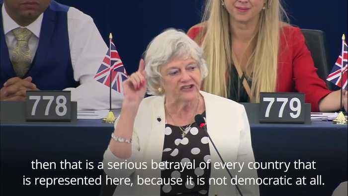 Ann Widdecombe criticised for comparing Brexit to 'slaves rising against owners'