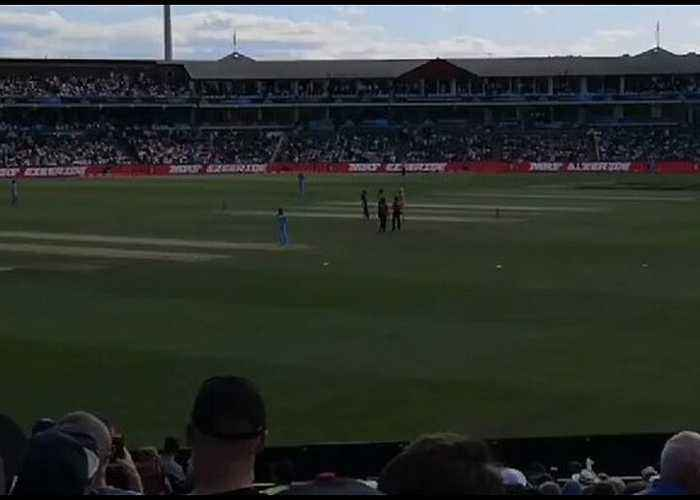 Streaker Leads Security on Wild Goose Chase at Cricket World Cup