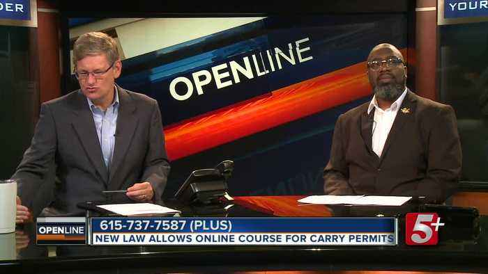 Should you be able to get a gun carry permit online? p1