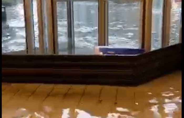 'This is Crazy': Floodwaters Wash Into Tulane University Building in New Orleans