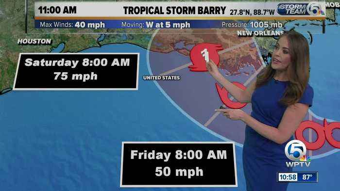 Tropical Storm Barry forms