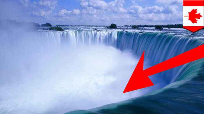 Canadian man survives plunge into Niagara Falls