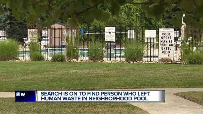 'Someone has been defecating in the pool,' search on to find person who left human waste in neighborhood pool