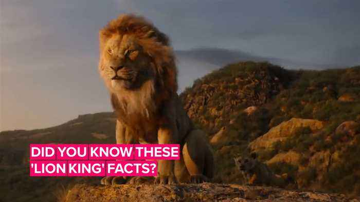 5 Things to know before watching the Lion King live action