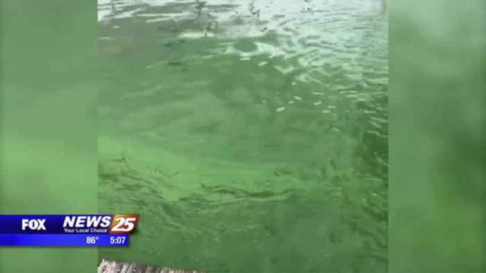 Tropical Storm Barry's effect on algal bloom