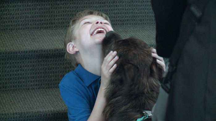 Iowa Funeral Home Helps Grieving Families with Emotional Support Dogs