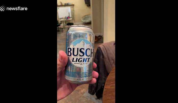Genius dog gets cold beer from fridge, throws away empty can and is best friend ever