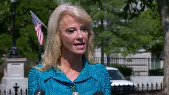'Never ever heard' Trump make racist comment: Conway